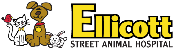 Ellicott Street Animal Hospital